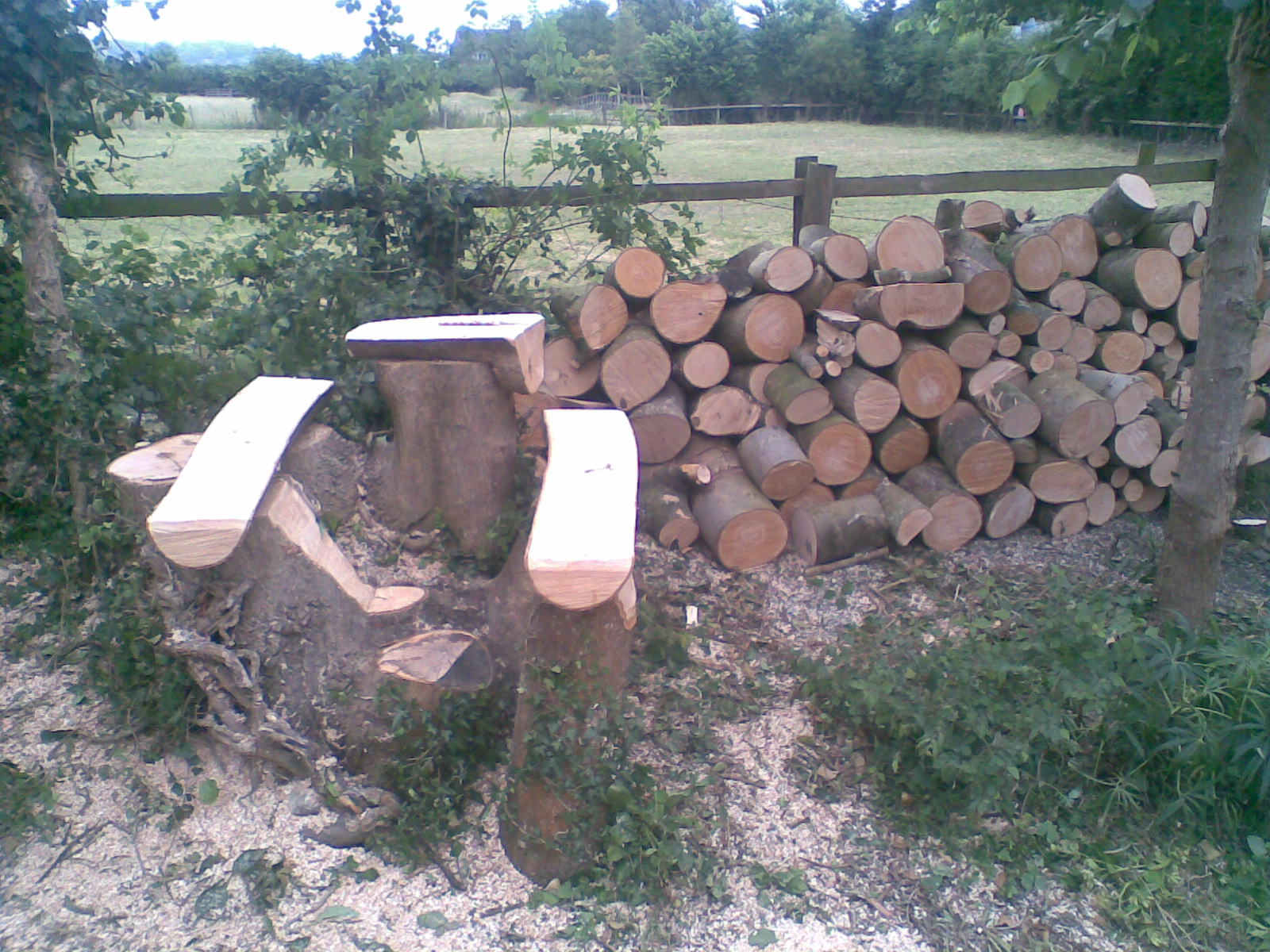 A bench seat and table carved from a stump
